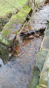 blocked gully 2
